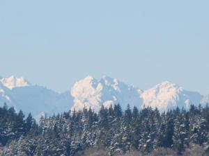 The snow capped Olympic Mountains on the horizon