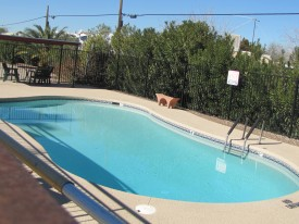 Newly refurbished pool