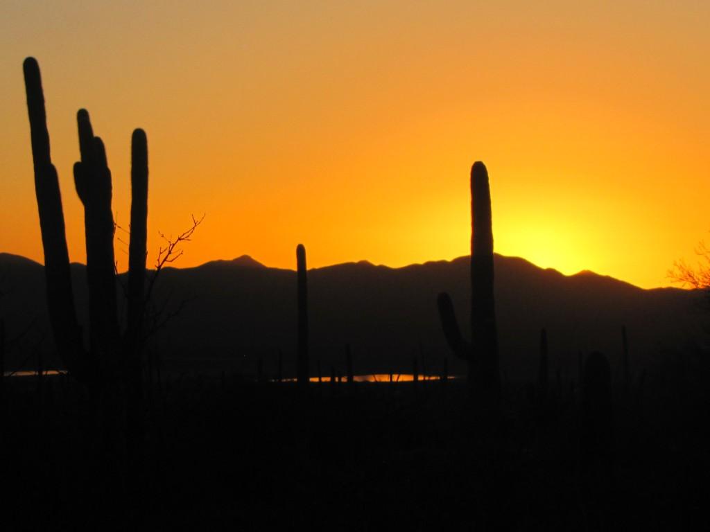 A beautiful blaze of the day's last light